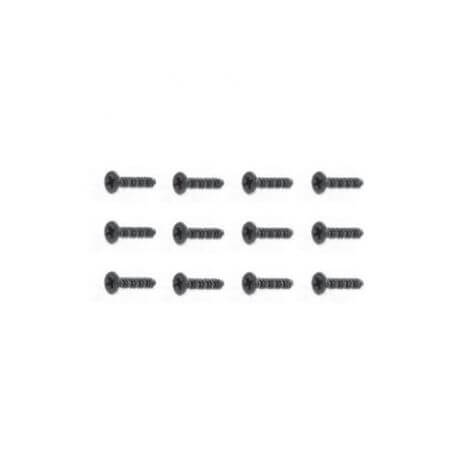 Vis 2,6x8mm (x12) FTX SURGE 1/12 - FTX6766