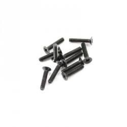 Vis 2x10mm (x10) FTX SURGE 1/12 - FTX7301